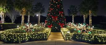 orlando christmas buffet christmas events near international