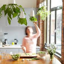 brilliant kitchen vertical garden make your own kitchen micro
