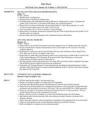 lpn resume exles travel lpn resume sles velvet