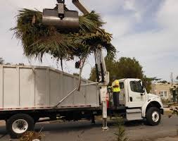 wpb city of west palm beach engineering and public works