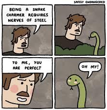 So Cute Meme - the snake is so cute meme by mustafatopi memedroid