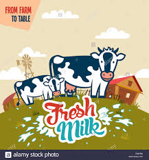 from farm to table fresh milk from farm to table advertising poster with label stock