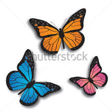 blue monarch butterfly clipart 36