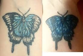 butterfly touchup by candiceshadow on deviantart