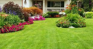 landscape garden design with landscaping ideas for front of inside