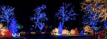 install christmas tree lights addison il professional christmas