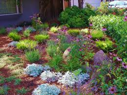 Drought Friendly Landscaping by 3 Misconceptions About Drought Tolerant Landscaping