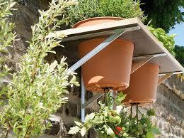 gem se pflanzen balkon gemã se pflanzen balkon beautiful home design ideen