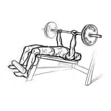 Decline Bench Leg Raises Decline Bench Press Chest Exercise With Barbell