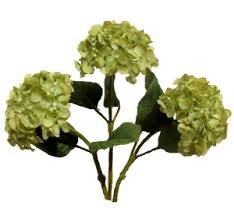 silk hydrangea artificial silk green hydrangea your own bouquet pyob flower bar