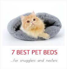 Burrowing Dog Bed 7 Best Cozy Pet Beds For Snugglers Petslady Com