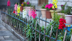 noteworthy garden fence lowes tags yard fence buy wood fence
