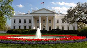 what can donald trump u0027s presidential campaign teach your brand