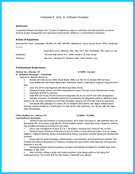 Resume Summary Software Engineer How Professional Database Developer Resume Must Be Written