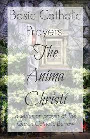 6238 best cf catholic prayer images on pinterest catholic