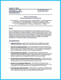 Resume For Senior Level Management Outstanding Cto Resume For Professionals