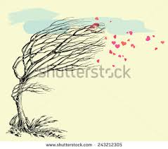 tree without leaves stock images royalty free images u0026 vectors