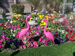 plastic flamingos the pink flamingo