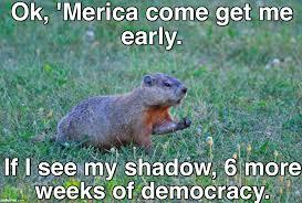Groundhog Meme - pokeme meme generator find and create memes