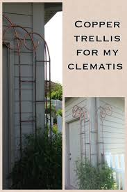 42 best trellis images on pinterest trellis ideas garden