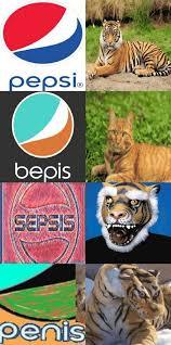 Bepis Meme - bepis cat version dank memes amino