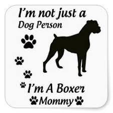 boxer dog sayings and boxers are especially