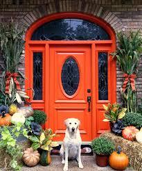 doors outdoor swimming pool cute door decorating ideas for