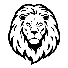 25 lion head drawing ideas lion drawing lion