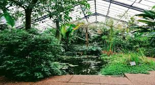 Botanic Gardens Dundee Botanic Garden Calls For Budding Writers And Artists News