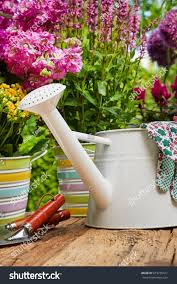 gardening tools flowers on terrace garden stock photo 673735417