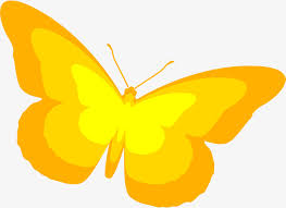 yellow butterfly yellow simple butterfly png image and clipart