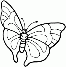 perfect free printable butterfly coloring page 7771 unknown