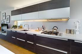 Contemporary Kitchen With Undermount Sink  European Cabinets In - Contemporary kitchen sink