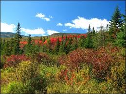 New Hampshire landscapes images New hampshire united states jpg