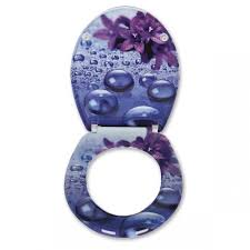 Soft Close Toilet Seat Violet