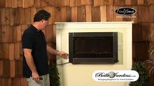 Modern Wood Burning Fireplace Inserts Stainless Steel Wood Burning Fireplace Inserts Trgn 6390f3bf2521