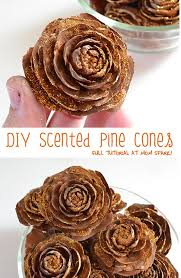 Pine Cone Home Decor Best 25 Pine Cone Crafts Ideas On Pinterest Scandinavian