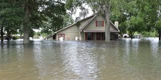 monster truck show lafayette la incredible images show louisiana u0027s massive flooding