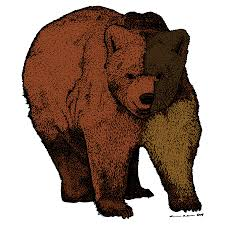 walking bear color drawing karl addison