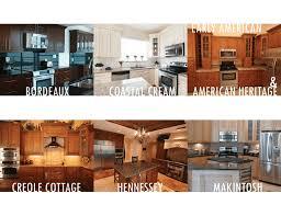 kitchen cabinets direct from manufacturer 22 best rta kitchen