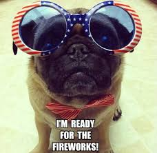 Funny 4th Of July Memes - 10 best images about 4th of july on pinterest birthday wishes