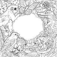 color the natural world page a day