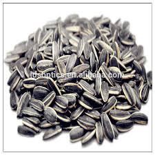 bulk organic sunflower seeds bulk organic sunflower seeds