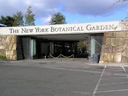 new york botanical garden wikipedia