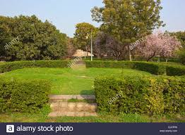 ornamental gardens with flowering cherry trees and mango trees