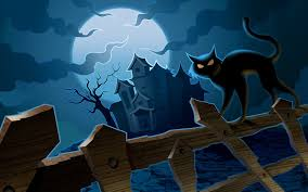 halloween night fence cat wallpaper computer background