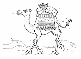 desert landscape coloring pages desert tortoise coloring page at