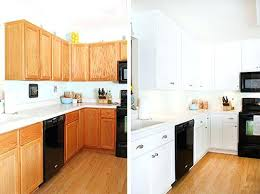 Refinish Kitchen Cabinets Without Stripping Refinish Kitchen Cabinets Without Stripping How To Paint Kitchen