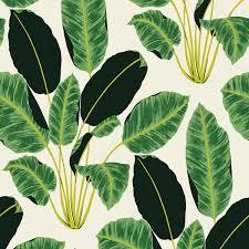 tempaper wallpaper wallpaper love hojas cubanas by tempaper the english room