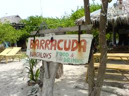 koh lipe island pattaya beach barracuda mapio net